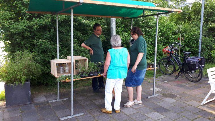 Volop planten te koop van eigen huis en sociale moestuin for Huis te koop van eigen huis en tuin
