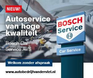 Bosch Car Service AVS